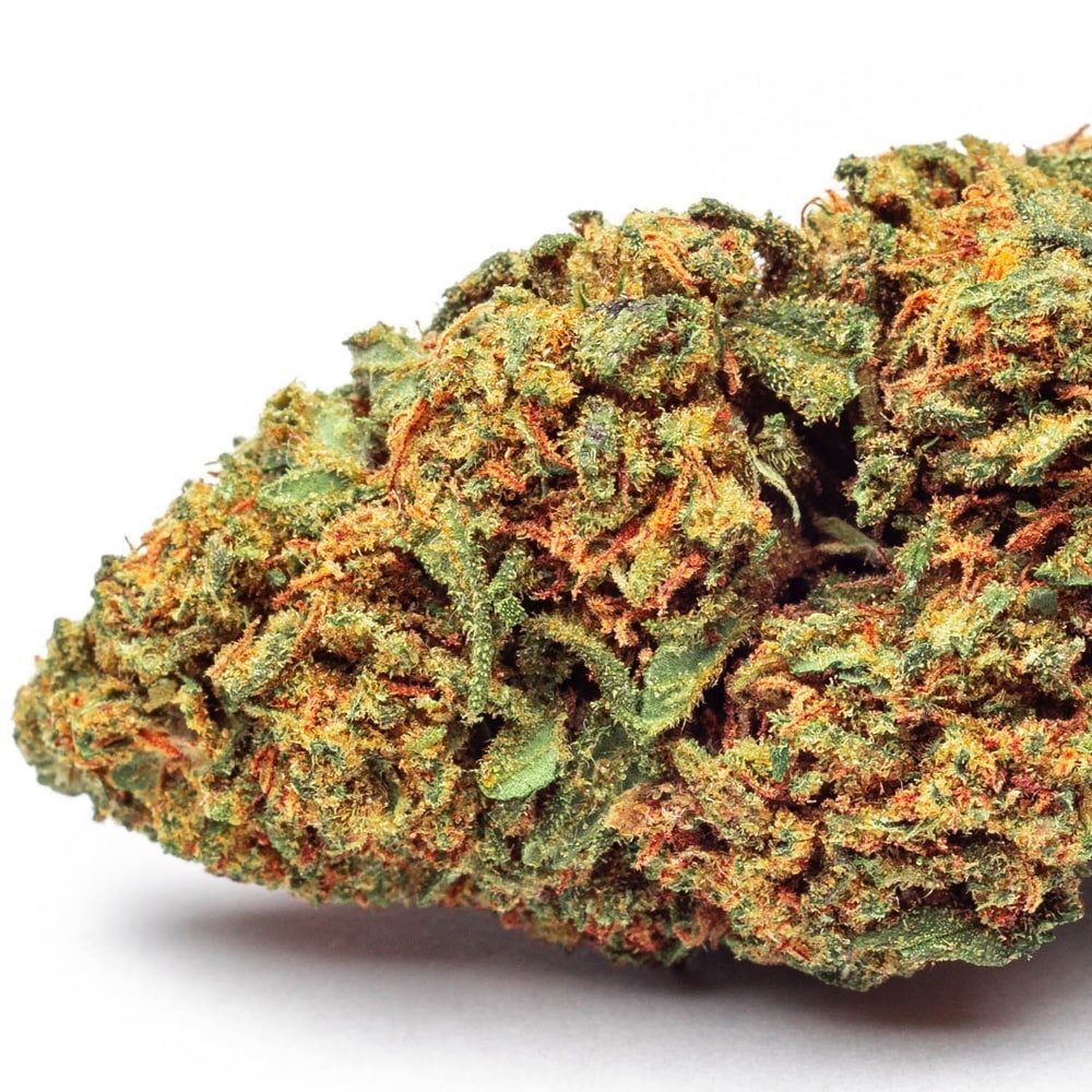 marijuana Critical