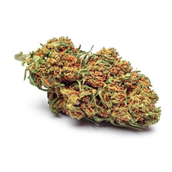 cannabis legale white widow