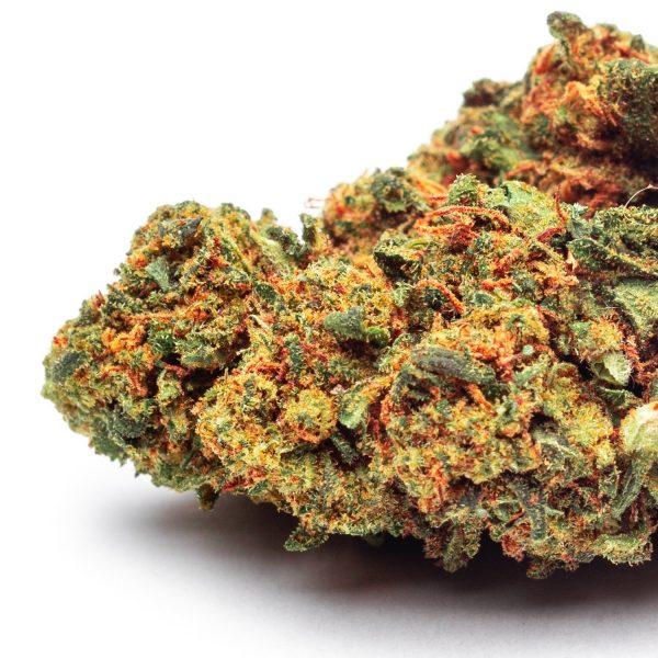 purple haze cannabis legale
