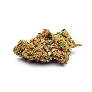 purple haze marijuana legale