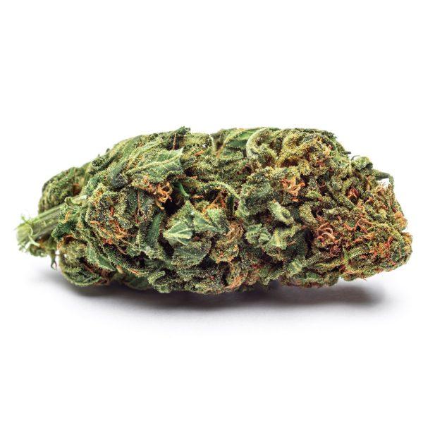 cannabis legale Silver Haze