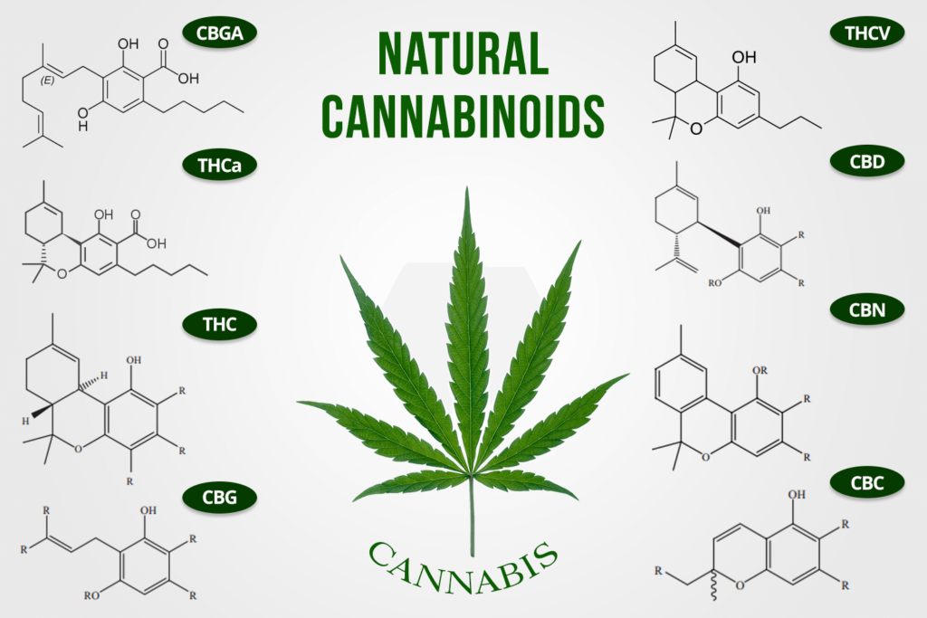 Principi attivi marijuana