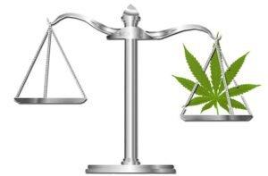 legalizzazione marijuana Italia