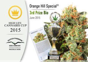 orange bud 3rd place